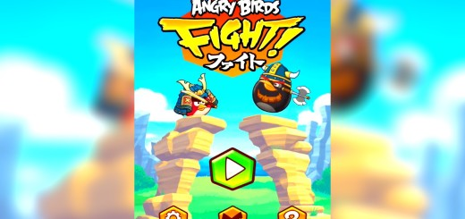 Angry Bird Fight for PC