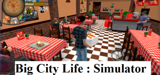 Big City Life Simulator for pc